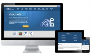 OrganizingForEveryday-ResponsiveWebsite